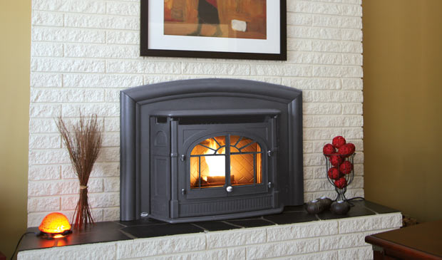 Empress Pellet Fireplace Insert